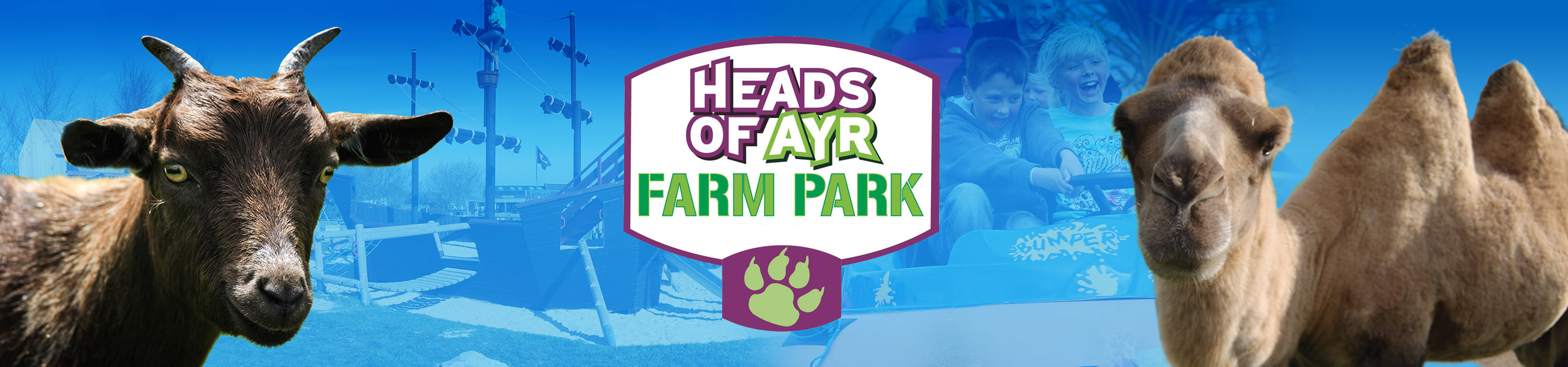 Heads of Ayr Farm Park logo with alpaca and pygmy goat in foreground