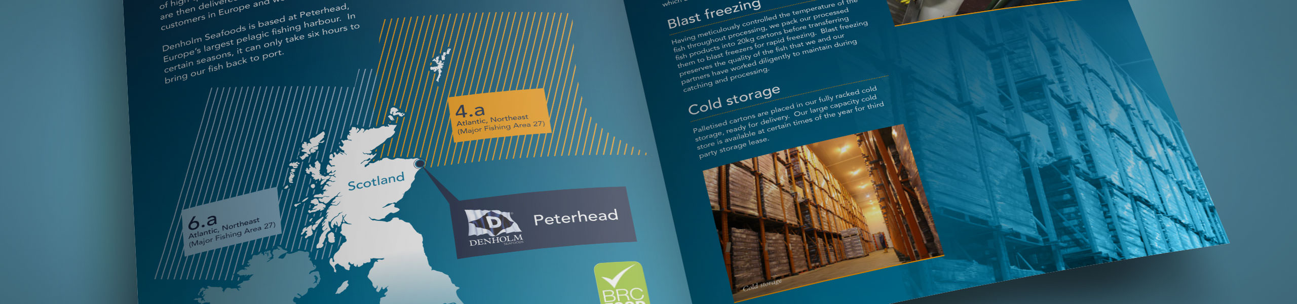 brochure spread for Denholm Seafoods